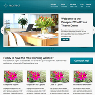 Responsive web design in milpitas